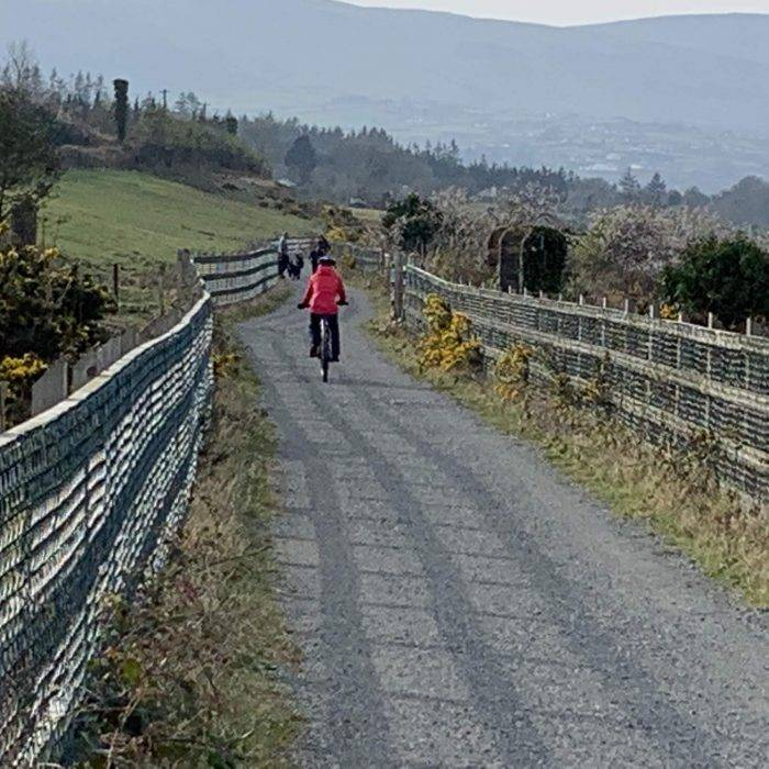 On yer BIke Carlingford Greenway Bicycle Hiring Rental 48